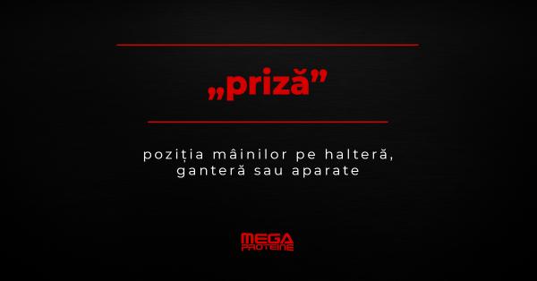 "Ce inseamna ""priza"" | Definitie ""priza"" | Dictionar de culturism"