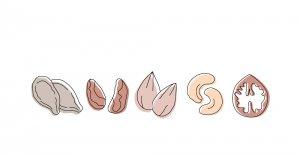 Semințe și sâmburi bio